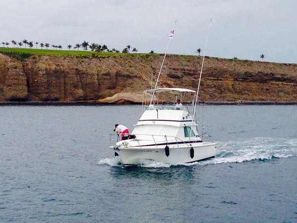 Used Bertram 33 Flybridge Cruiser Boat For Sale