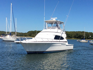 Used Bertram Cruiser Boat For Sale