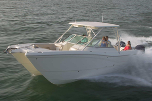 New World Cat 295 DC Power Catamaran Boat For Sale
