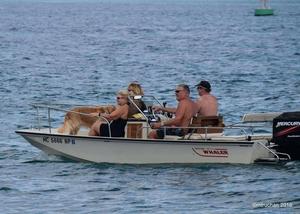 Used Boston Whaler 17 Montauk Bowrider Boat For Sale