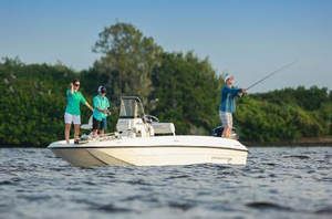 New Bayliner Element F18 Center Console Fishing Boat For Sale