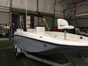 New Bayliner Element F21 Deck Boat For Sale
