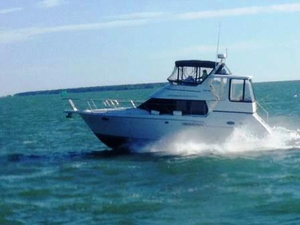 Used Carver 356 Aft Cabin Aft Cabin Boat For Sale