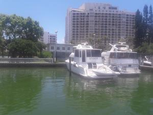 Used Carver Yachts 500 Motor Yacht For Sale