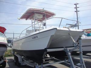 Used Glacier Bay 220 Center Console Power Catamaran Boat For Sale