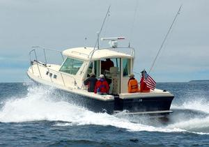 Used Albin 31 Tournament Express Saltwater Fishing Boat For Sale