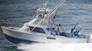Used Bertram 31 Flybridge Cruiser Sports Fishing Boat For Sale