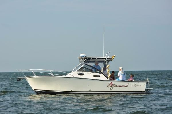 Used Albemarle 285 XF Express Cruiser Boat For Sale