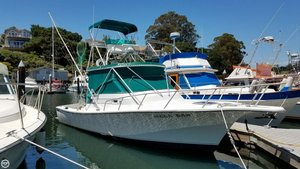 Used Shamrock 31 Grand Slam Sports Fishing Boat For Sale