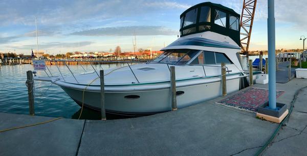 Used Trojan 10 Meter Sedan Bridge Convertible Fishing Boat For Sale