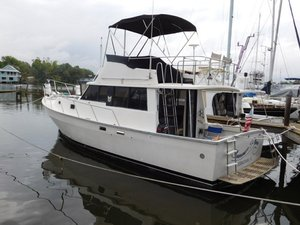 Used Mainship Motor Yacht For Sale