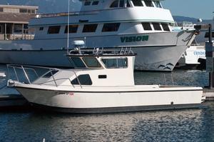 Used Radon 27 Dive Boat For Sale
