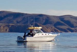 Used Wellcraft Coastal 330 Express Cruiser Boat For Sale