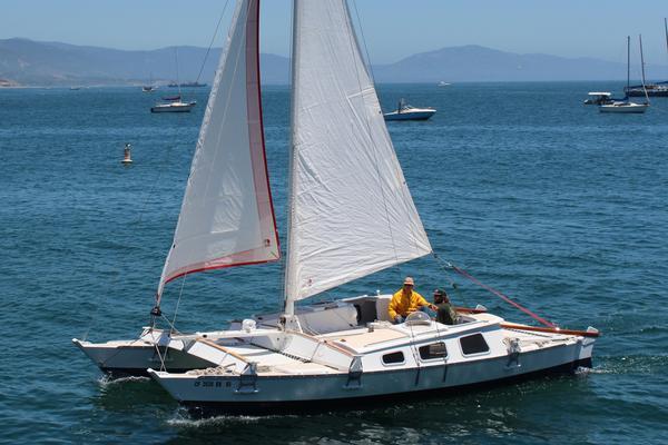 Used Wharram Tiki 30 Cruiser Sailboat For Sale