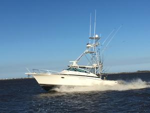 Used Bertram 38 Special Motor Yacht For Sale