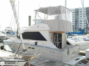 Used Sea Ray 305 Sedan Bridge Sports Fishing Boat For Sale