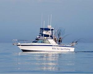 Used Wellcraft 2900 Sport Bridge Freshwater Fishing Boat For Sale