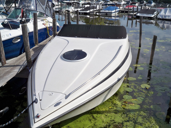 Used Crownline 248 CCR Express Cruiser Boat For Sale