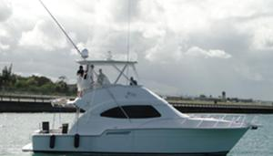 Used Bertram 450 Convertible Saltwater Fishing Boat For Sale