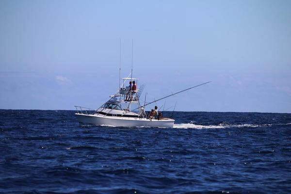 Used Bertram Bahia Mar Sports Fishing Boat For Sale