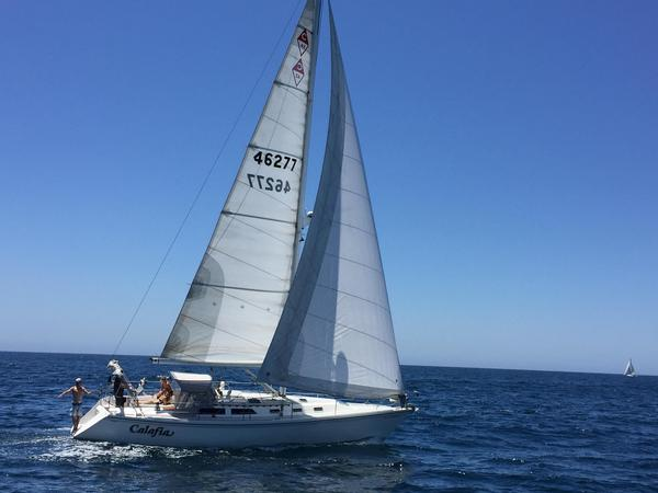 Used Catalina 42 3-cabin Pullman Racer and Cruiser Sailboat For Sale