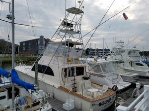 Used Pace Sportfisherman Sports Fishing Boat For Sale