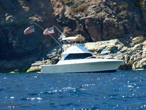 New Bertram 35 Convertible Boat For Sale