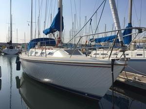 Used Catalina 34 Daysailer Sailboat For Sale