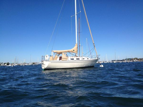 New Pearson 303 Sloop Sailboat For Sale