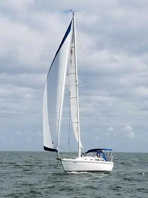 Used Catalina 30 MKII Cruiser Sailboat For Sale