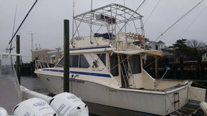 Used Chris-Craft 382 Commander Sports Fishing Boat For Sale