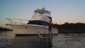 Used Wellcraft 35 Convertible Fishing Boat For Sale