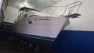 Used Chris-Craft 350 Catalina Motor Yacht For Sale