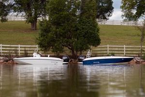 New Bayliner 180 EL Deck Boat For Sale