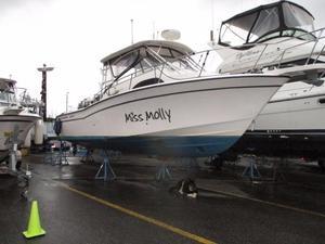 Used Grady-White Marlin 300 Cruiser Boat For Sale