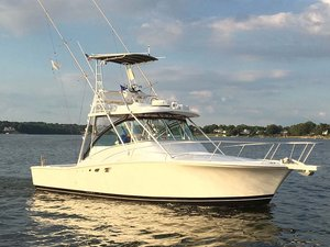 Used Luhrs 320 Express Sports Fishing Boat For Sale