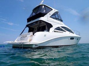Used Sea Ray 450 Sedanbridge Motor Yacht For Sale