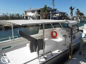 Used Island Hopper 30 Charter Boat For Sale