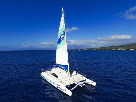 Used Custom Built Catamaran Sailboat For Sale