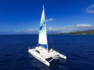 Used Custom Built Catamaran Sailboat For Sale