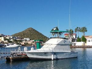Used Catalina Islander 34 Convertible Fishing Boat For Sale