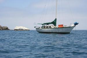 Used Islander Freeport 36 Cruiser Sailboat For Sale