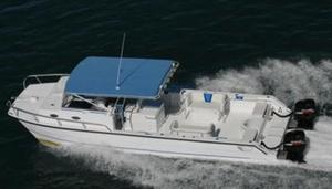 Used Twin Vee Ocean Cat/Weekender Power Catamaran Boat For Sale