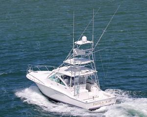 Used Cabo 40 Express Sports Fishing Boat For Sale