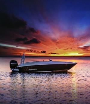 New Bayliner Element E18Element E18 Deck Boat For Sale