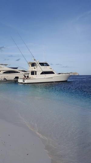 Used Viking Enclosed Bridge Motor Yacht For Sale