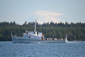 Used Bellingham Shipyard Minesweeper Antique and Classic Boat For Sale