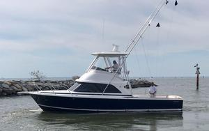 New Bertram 35 Sports Fishing Boat For Sale