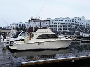 Used Pace 36 Convertible Cruiser Boat For Sale