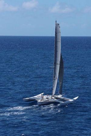 Used Newick Custom TRI Trimaran Sailboat For Sale
